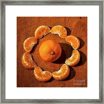 Mandarin Framed Print by Kaye Menner