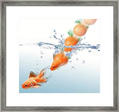 Mandarin Turning Into Gold Fish Framed Print by Leonello Calvetti