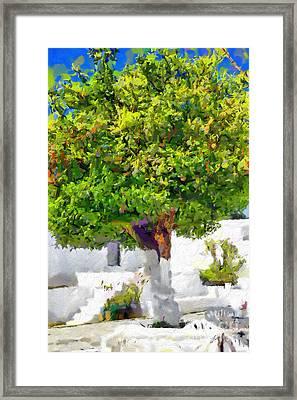Mandarine Tree Painting Framed Print by Magomed Magomedagaev