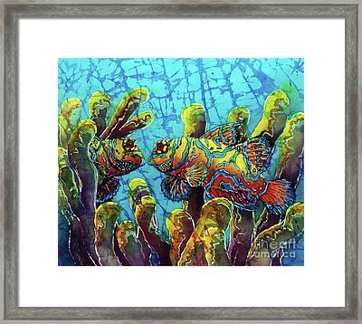 Mandarinfish  Framed Print by Sue Duda