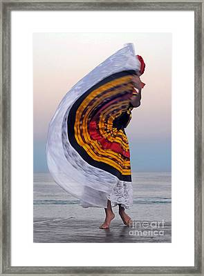 Many Colors Framed Print by Dan Holm