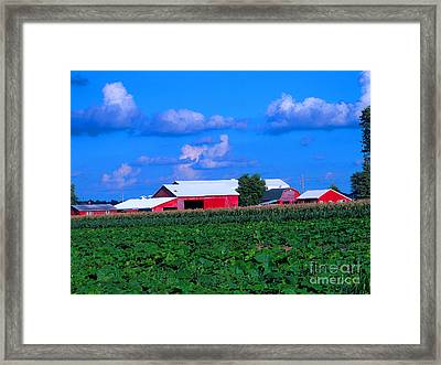Many Layers Of Sights To Behold Framed Print by Tina M Wenger