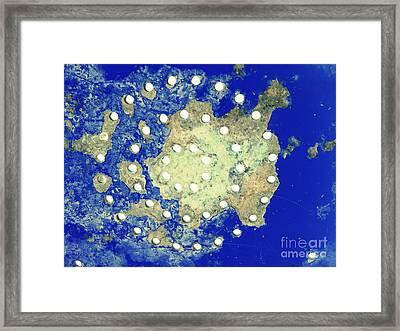 Map Coordinates Land And Sea Abstract Framed Print by Ella Kaye Dickey