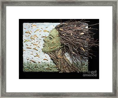 Maple Showers Framed Print by Adam Long