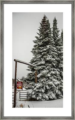 Maple Syrup For Sale Framed Print by Paul Freidlund