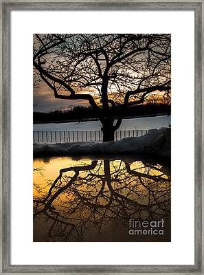 March Meltdown Framed Print by Sue OConnor