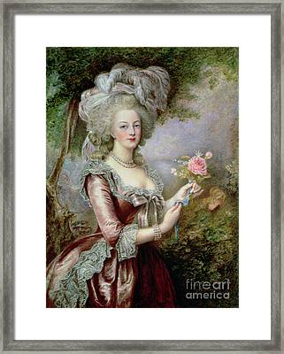 Marie Antoinette After Vigee Lebrun Framed Print by Louise Campbell Clay