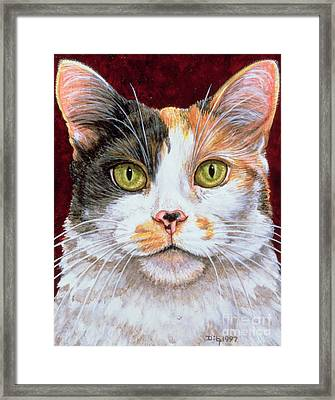 Marigold Framed Print by Ditz