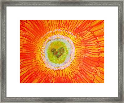 Marigold Framed Print by Lisa Dyck