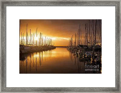 Marina Golden Sunset Framed Print by Mike Reid