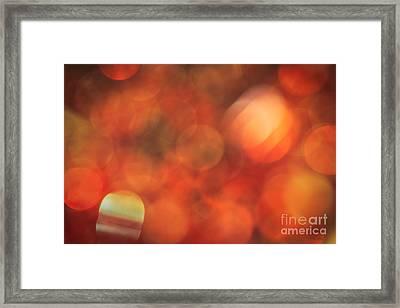 Marmalade Framed Print by Jan Bickerton