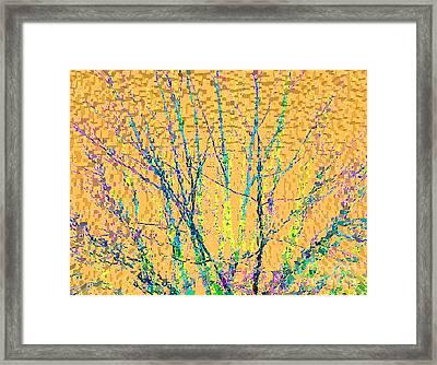 Marmalade Sky Framed Print by Ann Johndro-Collins