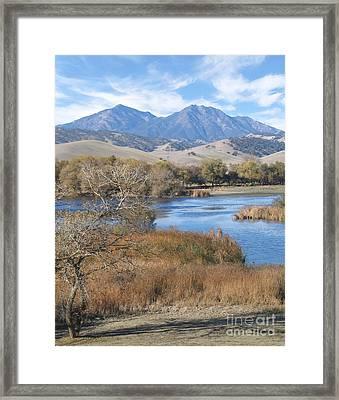 Marsh Creek October Framed Print by Stu Shepherd