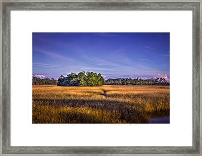 Marsh Hammock Framed Print by Marvin Spates