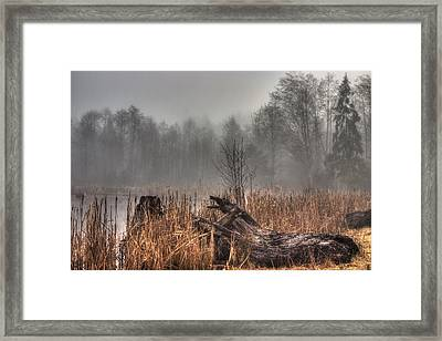 Marsh In Fog Framed Print by Randy Hall