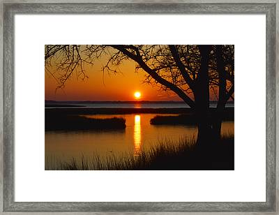 Ocean City Sunset At Old Landing Road Framed Print by Bill Swartwout