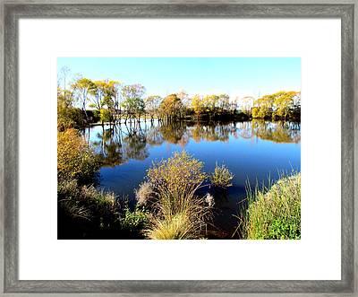 Marslands Water Ways Framed Print by Joyce Woodhouse
