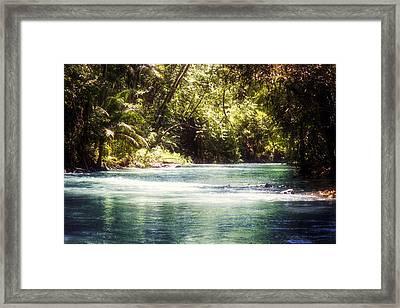 Martha Brae River Framed Print by Melanie Lankford Photography
