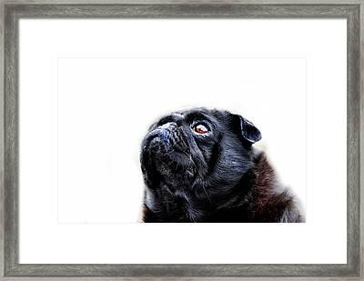 Martha Framed Print by Mark Rogan