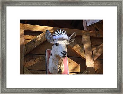 Maryland Renaissance Festival - Merchants - 121242 Framed Print by DC Photographer