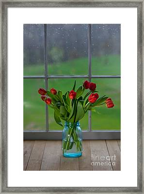 Mason Jar With Tulips Framed Print by Kay Pickens