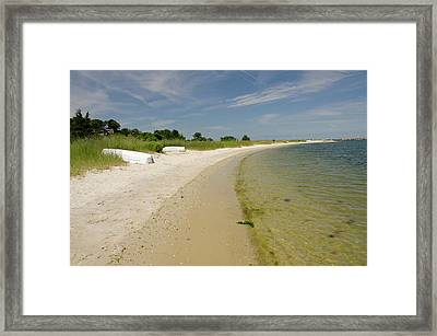 Massachusetts, Martha's Vineyard Framed Print by Cindy Miller Hopkins