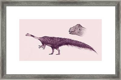 Massospondylus Dinosaur Framed Print by Nemo Ramjet