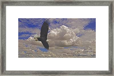 Master In Flight - Signed  Framed Print by J L Woody Wooden
