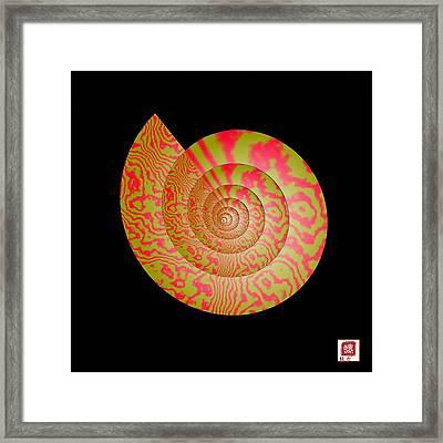 Math Conch Framed Print by GuoJun Pan