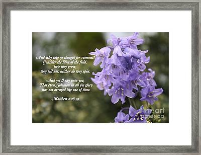 Matthew 6 Verses 28 And 29 Framed Print by Vicki Maheu