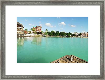 Mauritius, Grand Baie, A Small Teddy Framed Print by Anthony Asael