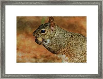 Me And My Peanut Framed Print by Deborah Benoit