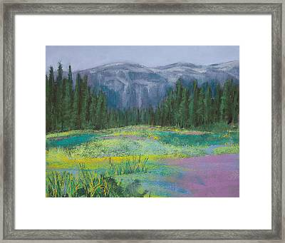 Meadow In The Cascades Framed Print by David Patterson