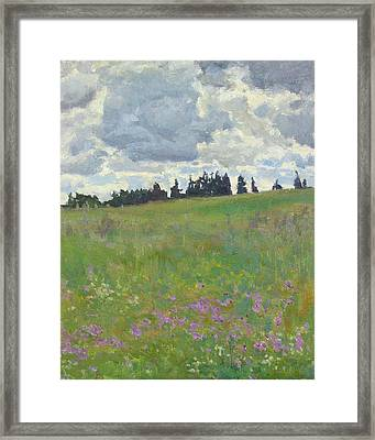 Meadow Is Blooming Framed Print by Victoria Kharchenko