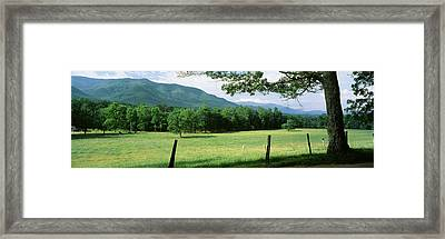 Meadow Surrounded By Barbed Wire Fence Framed Print by Panoramic Images