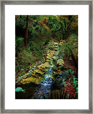 Meandering Stream Framed Print by Cary Shapiro