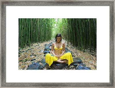 Meditation In Bamboo Forest Framed Print by M Swiet Productions