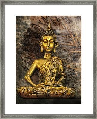 Meditation Framed Print by Joachim G Pinkawa