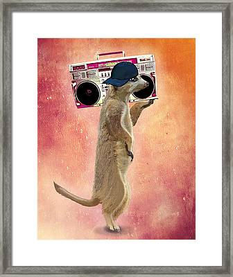 Meerkat With A Ghettoblaster Framed Print by Kelly McLaughlan