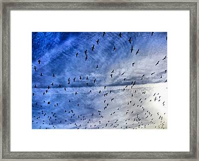 Meet Me Halfway Across The Sky 1 Framed Print by Angelina Vick