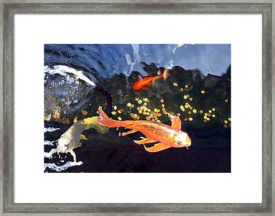 Meetings On The Riverbank Framed Print by Patricia Januszkiewicz