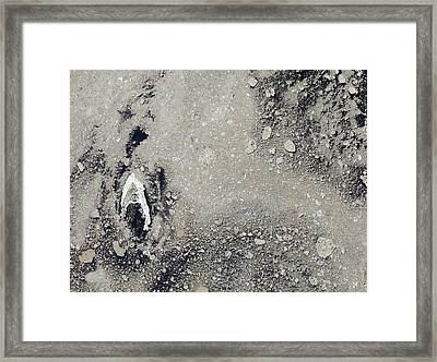 Melting Arctic Sea Ice Framed Print by Nasa Earth Observatory