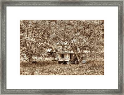 Memories Behind The Trees Framed Print by Dan Friend