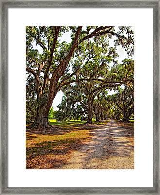 Memory Lane Framed Print by Steve Harrington