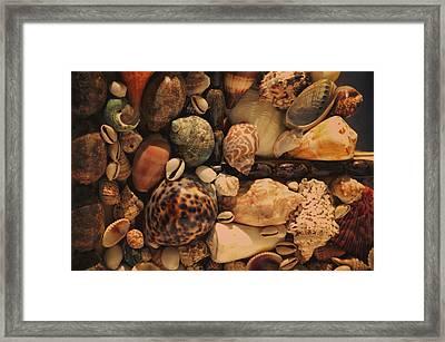 Memory Of The Sea Framed Print by Jenny Rainbow