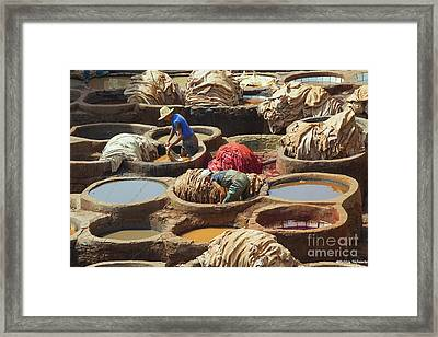 Men Dying Sheep Hides In Stone Vessels Framed Print by Patricia Hofmeester