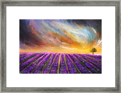 Menacing Beauty - Lavender Fields Paintings Framed Print by Lourry Legarde