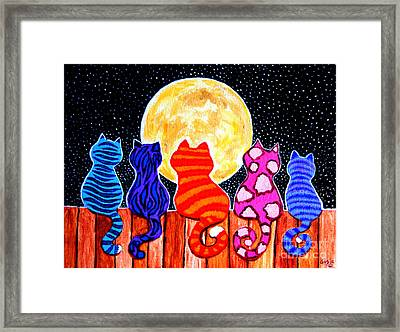 Meowing At Midnight Framed Print by Nick Gustafson