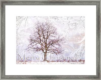 Merry Christmas Framed Print by Jenny Rainbow