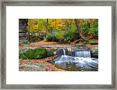 Mesmerizing Framed Print by Frozen in Time Fine Art Photography